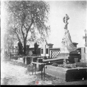 Migawki z cmentarza #dzieńzbasią